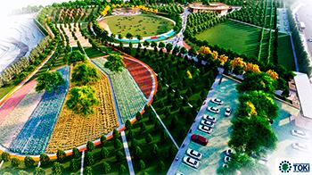 Toki, 6 Millet Bahçesinin İhale Tarihini Açıkladı!