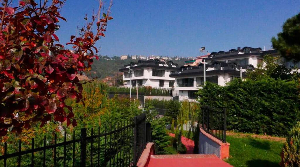Olive Sarıyer evleri